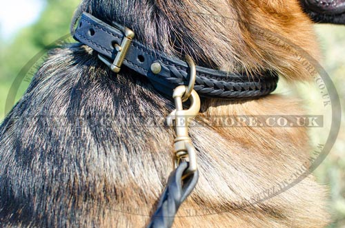 Buy German Shepherd Collar