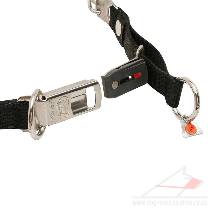 Quick Release Dog Collars Uk