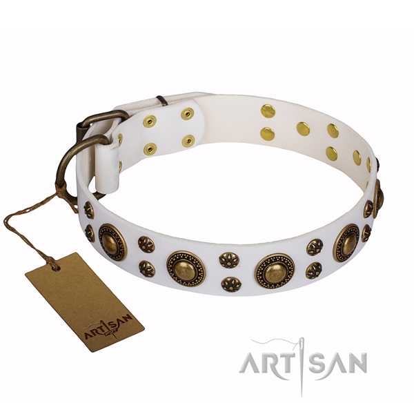 white leather dog collar for sale