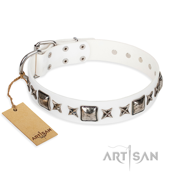 White dog collar for sale
