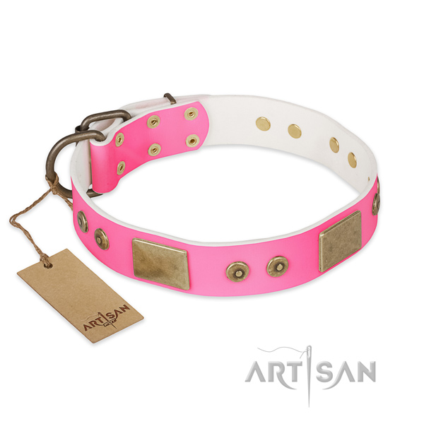 Leather dog collar for sale