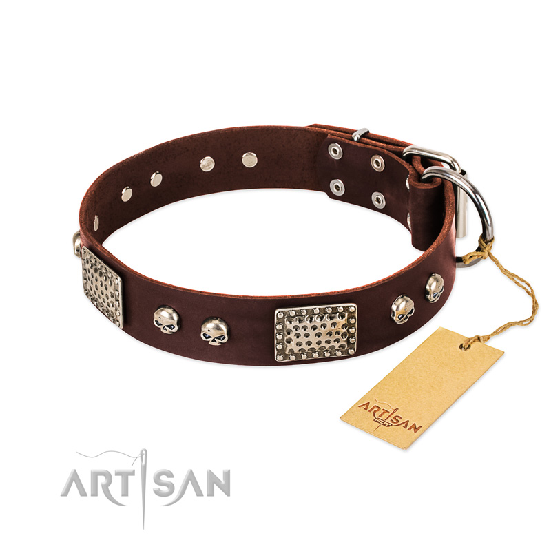 Brown Leather Dog Collar With Pirate Skulls