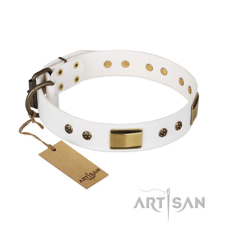 White Dog Collar With Plates And Medallions