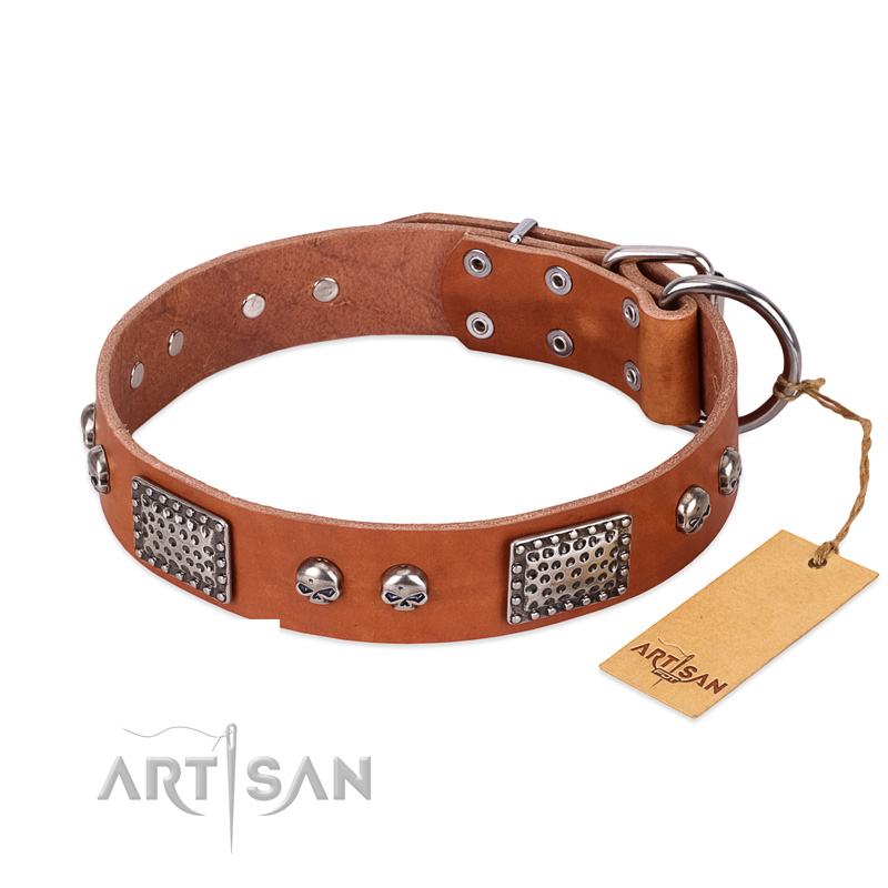 Leather Dog Collar by FDT Artisan