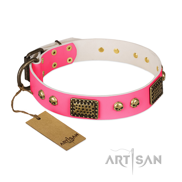 Brown Dog Collar for Sale