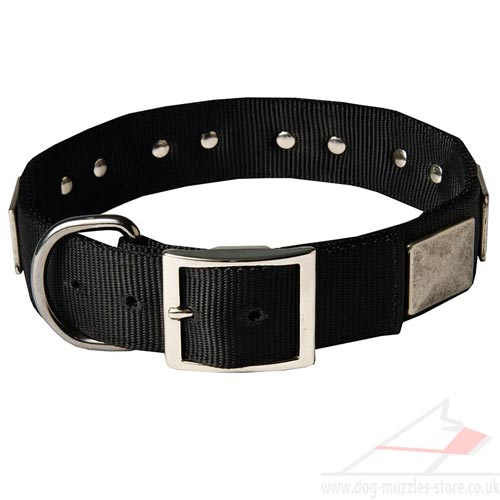 Strong Dog Collars with Buckle