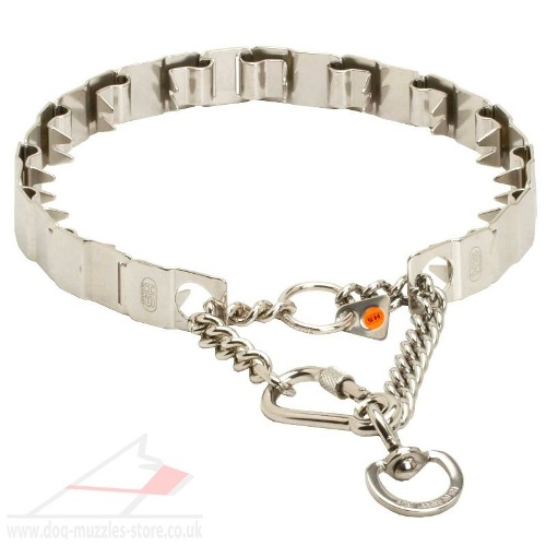 stainless steel prong collar for sale