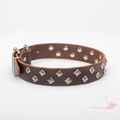 Brown Leather Dog Collar for Large Dogs