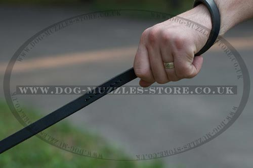Buy German Shepherd Collar and Lead with Handle