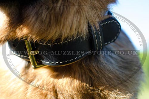 German Shepherd Collars UK