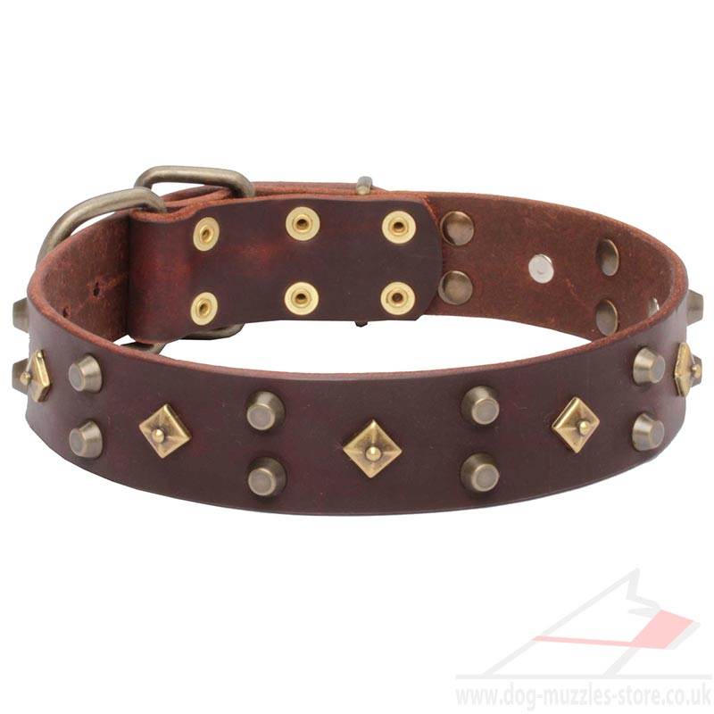 Luxury Dog Collars With Bronze Studs Fancy Dog Collars