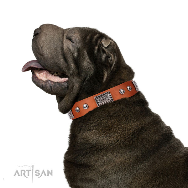 shar-pei dog collar for sale