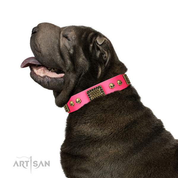 shar pei dog collar for sale