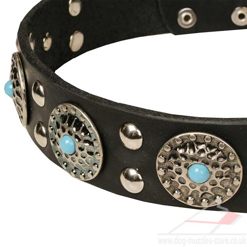 Large Dog Collars Leather