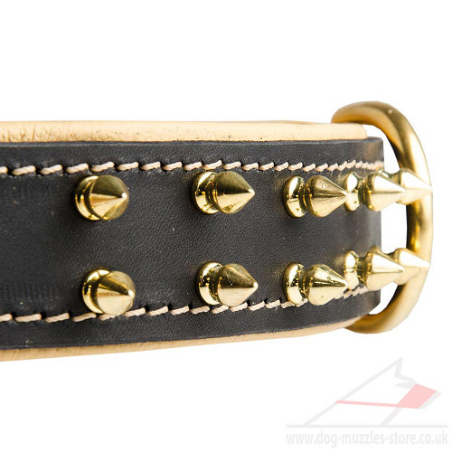 Luxury Spiked Dog Collar