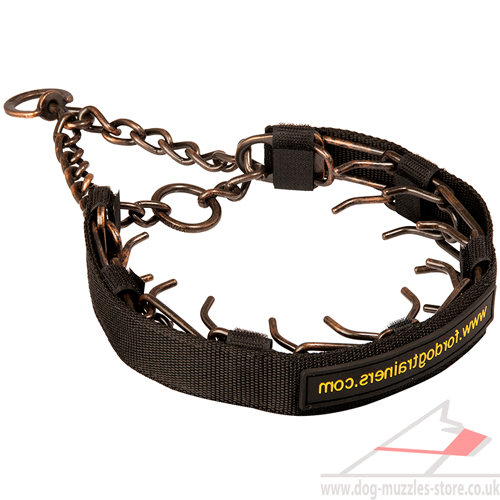 steel dog collar