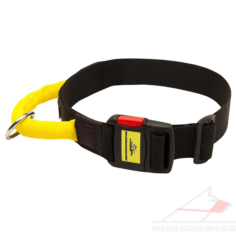 Strong Dog Collar with Handle. Strong Dog Collar with Handle for Reliable  Control