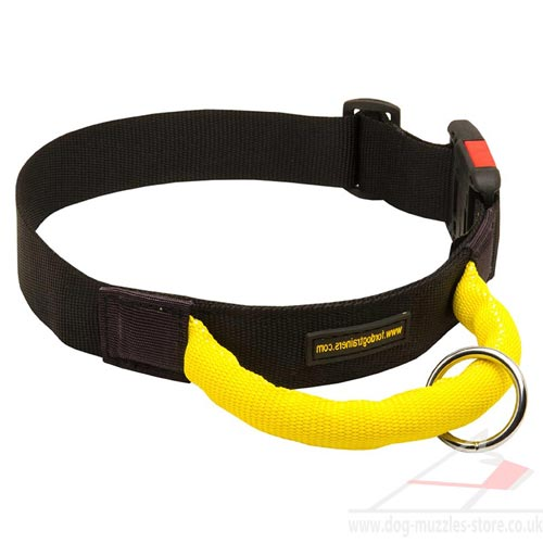 Strong dog collar best choice