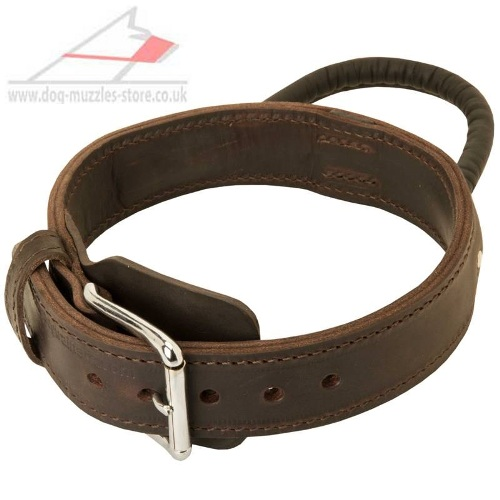 2 Ply Leather Dog Collar wit Handle for Husky Training