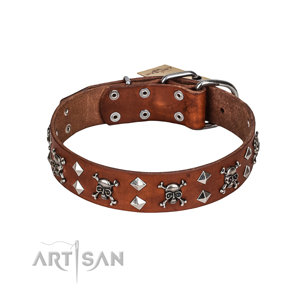 Dog Collar with Strong Fittings buy uk