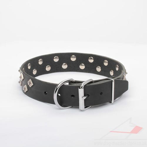 Black Leather Dog Collar with Buckle