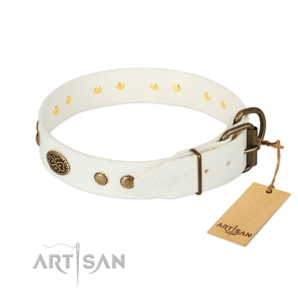 Leather Dog Collar Hardware