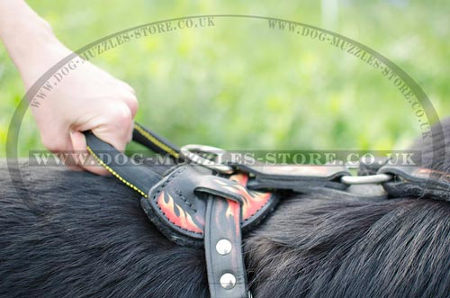 German Shepherd Training Dog Harness