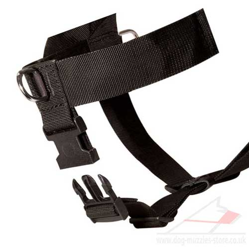 front clip dog harness to stop pulling