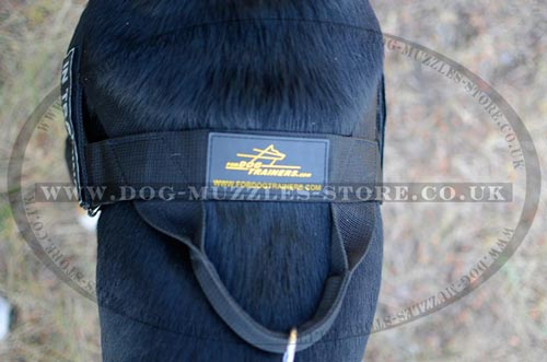 anti pulling dog harness with handle