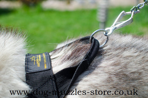 Siberian Husky Dog Harness