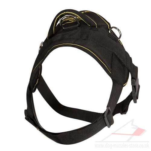 English Bulldog Harness with Handle