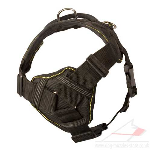 buy padded nylon dog harness UK