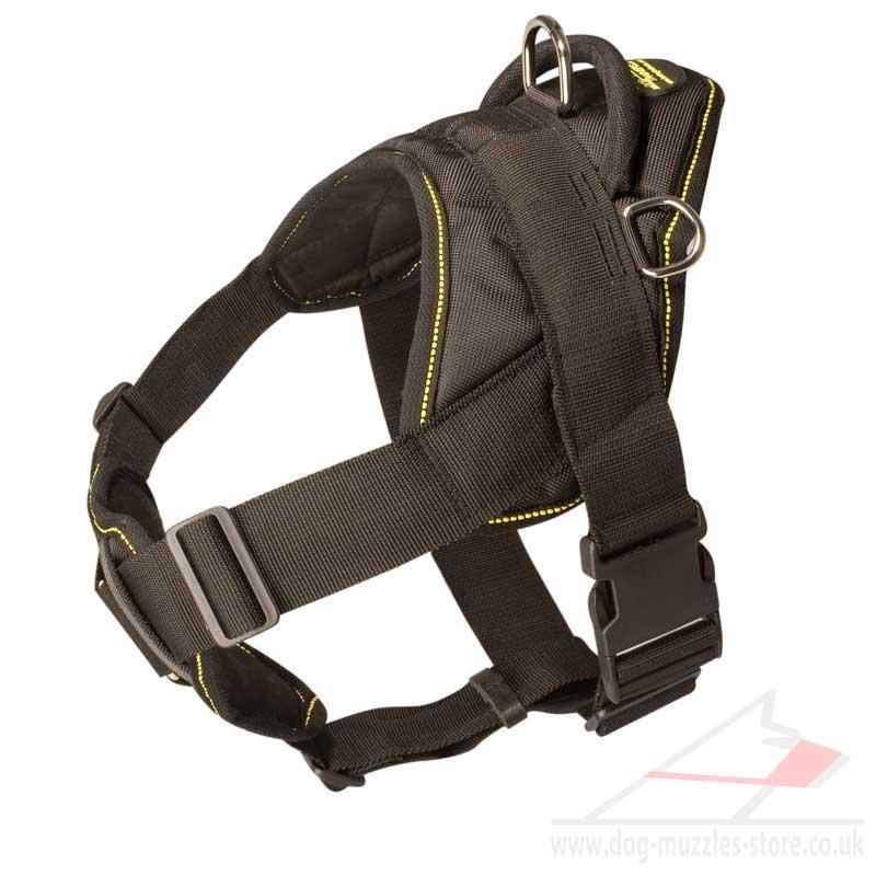 Nylon Dog Harness with Handle | English Bulldog Dog Harness UK - £47 ...