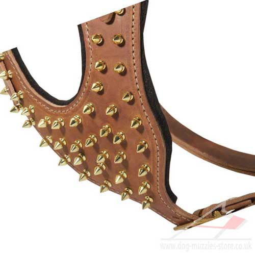 royal dog harness for large dog