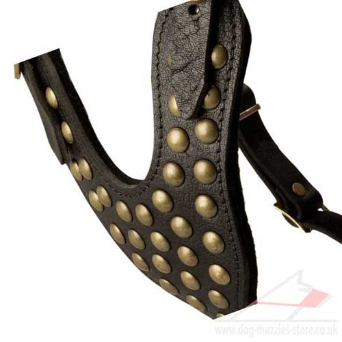 studded dog harness for large dog