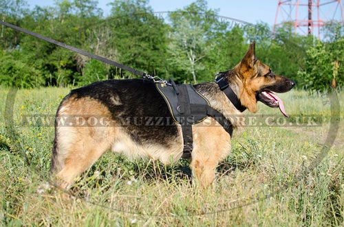 Dog Body Harness for German Shepherd