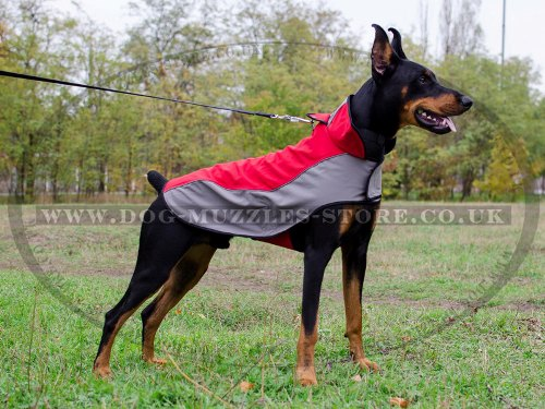 Warm Reflective Dog Coat for Doberman