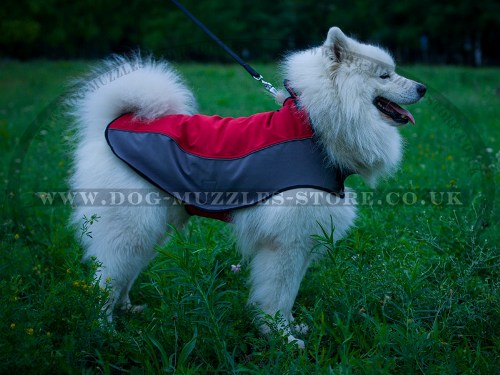 Waterproof and Warm Dog Coat for Samoyed