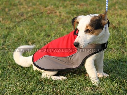 Waterproof Dog Coat XS for Jack Russel Terrier