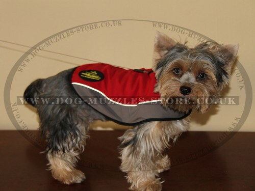 X Small Waterproof Dog Coats UK