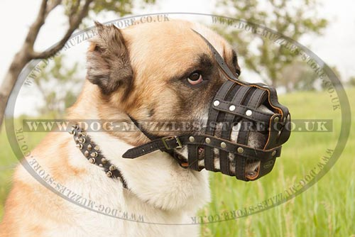 Soft Dog Muzzle for Big Dogs