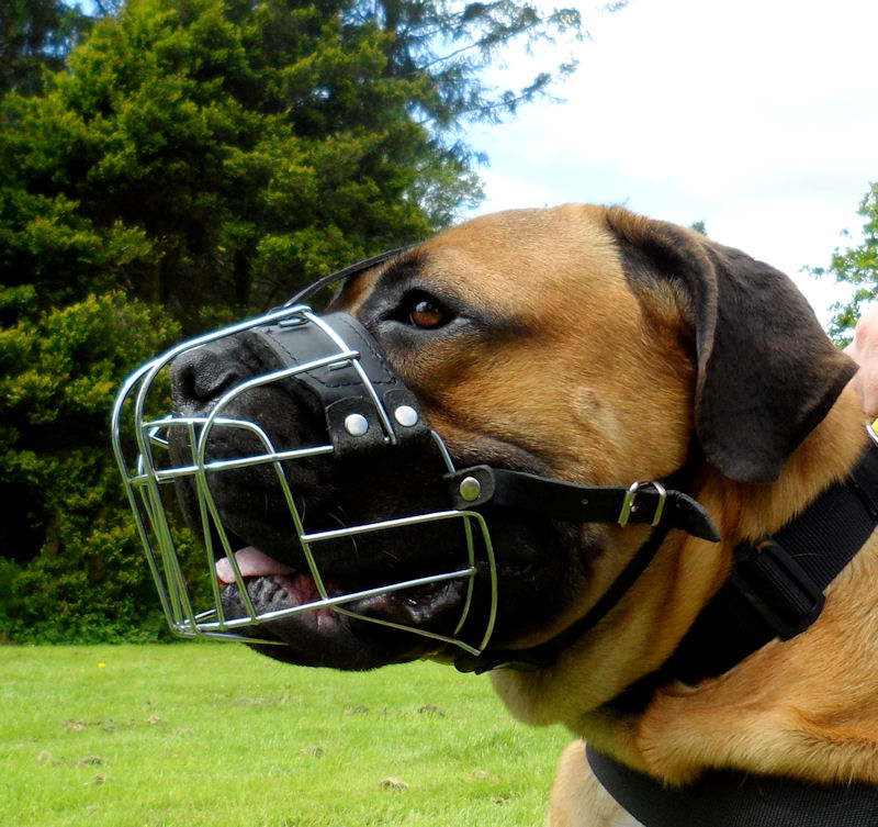 dog muzzle muzzles boerboel dogs mastiff basket breeds wire snout bestseller extra soft super training unique produced form padded ventilated