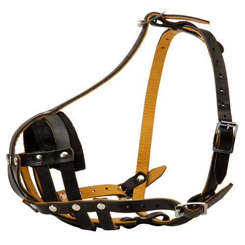 Leather Padded Dog Muzzle