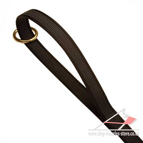 Walking Dog Leash