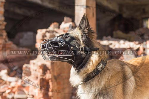 Basket Dog Muzzle for Belgian Shepherd Tervuren