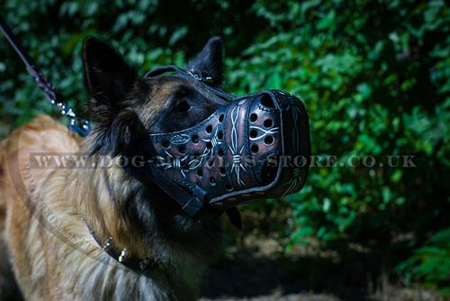 Best Muzzle for Dogs of Leather