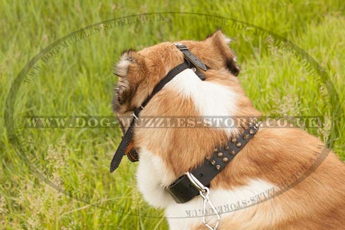 Big Dog Muzzle for Shepherd Dogs