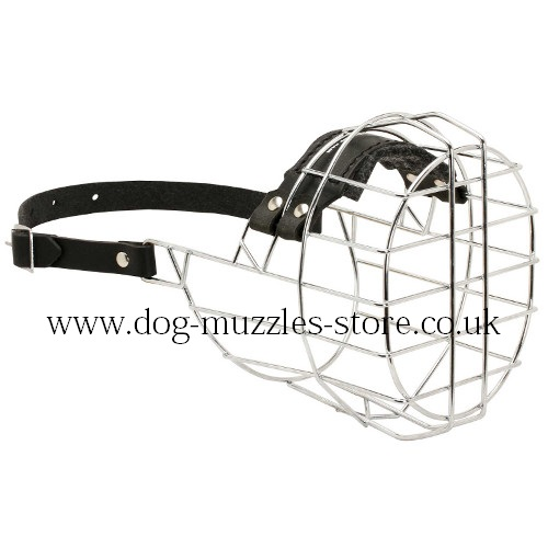 Basket Dog Muzzle for Boxer Muzzle Size