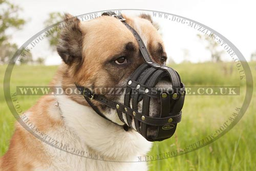 Big Dog Muzzle for Large Dogs