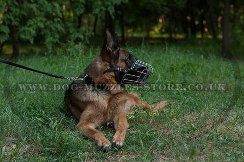 German Shepherd Muzzle Wire Basket